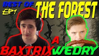 BEST OF BAXTRIX A WEDRY THE FOREST