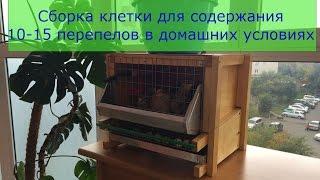 Клетка для домашнего содержания перепелов(Разведение перепелов дома или на приусадебном участке участке гораздо проще, чем выращивание другой птицы...., 2016-05-07T04:07:06.000Z)