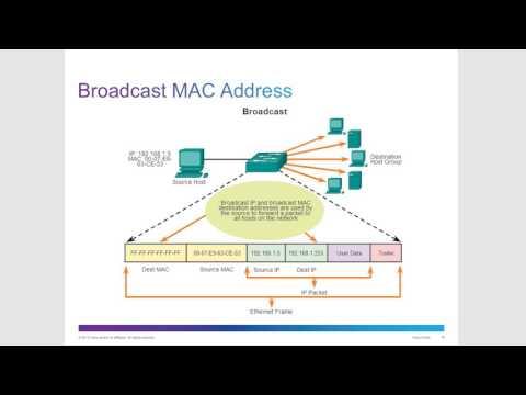 CCNA 1, Chapter 5: Ethernet