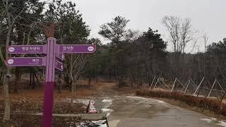바다향기수목원 경기도안산