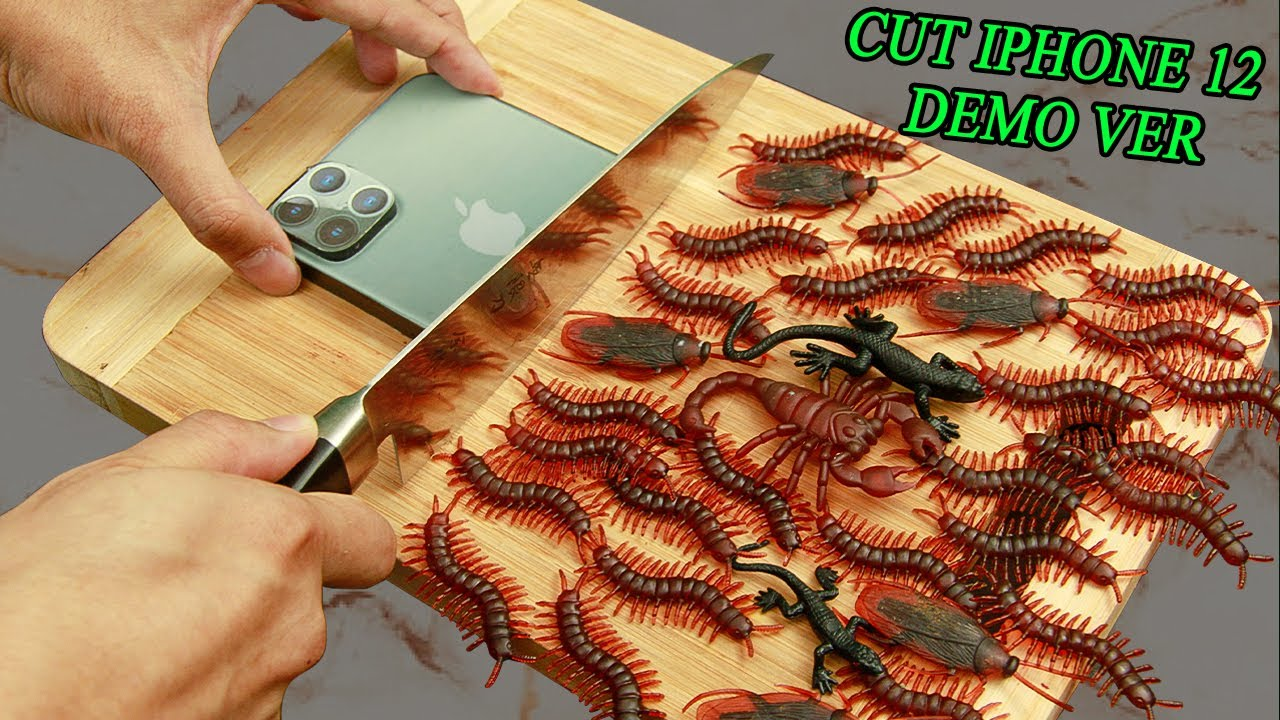 Stop Motion Cooking - INSECT fried From NEW IPHONE 12 DEMO VER