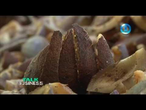 COCONUT INDUSTRY   SOLOMON ISLANDS