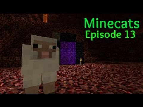Minecats [13] Sheep Stealing