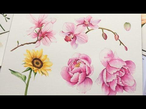 çeşitli çiçekler Boyamak At Enyatodd Youtube