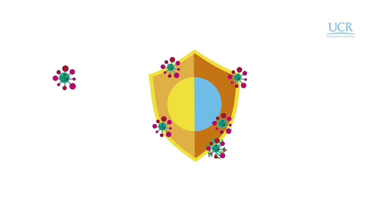 Download Ciencia en Todo: ¿qué es un virus?