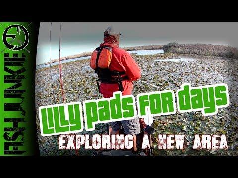 Exploring New Waters (Mendota Wildlife Area)