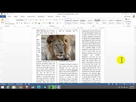 desktop publishing in Word 2013
