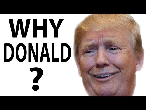 Why A Sane Person Would Support Donald Trump