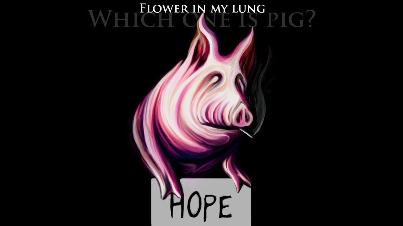 Flower in my lung pigs three different ones pink floyd cover flower in my lung pigs three different ones pink floyd cover mightylinksfo