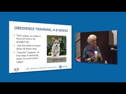 AKC Breeder to Breeder Symposium: Anne Bowes on Early Puppy Training