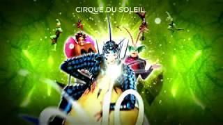 Por primeras vez en Medellín OVO del Cirque Du Soleil