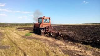 ДТ-75 работа на поле 25 июня 2017 г.