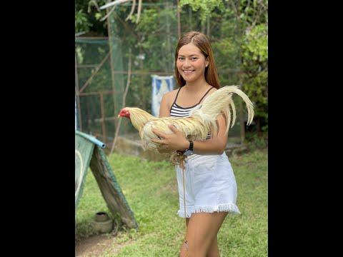 Vipermoves Farm Visit! SR HABITAT GAMEFARM 😎  