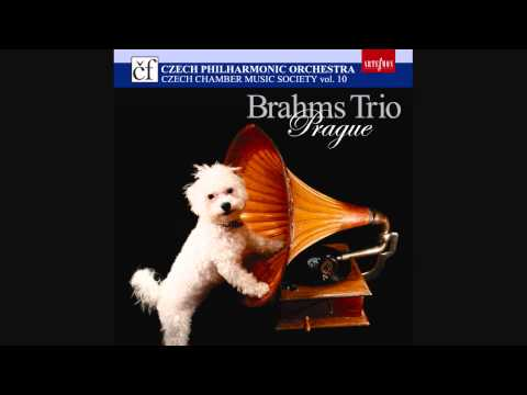 Johannes Brahms - Trio in E flat Major, op. 40 for violin, horn and piano