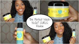 The Perfect Wash And Go? CURLS Blueberry Bliss Demo + Review