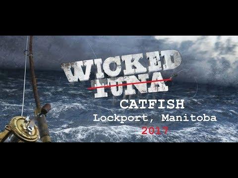 Wicked Catfish of Lockport Manitoba 2017