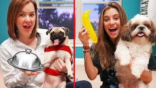 OUR DOGS TRY GUMMY FOOD VS REAL FOOD!!