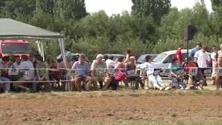 TraktorTV Folge 15 - Schmalspurpulling