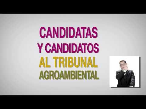 Candidat@s al Tribunal Agroambiental 1