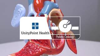 LiveWell TV: Pediatric Cardiology - What to Expect