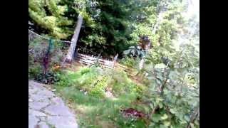Hugel Versus Regular Garden Bed Core Sample Comparison