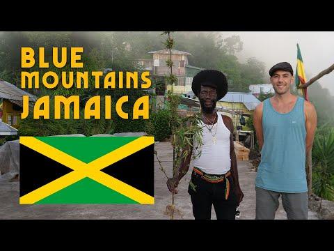 Trip To The Mystical Blue Mountains! Rasta Camp In Jamaica