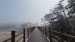 #태안 #만리포 #뭍닭섬데크길