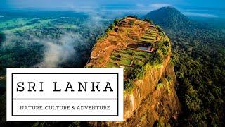 Travel sri lanka - wild nature