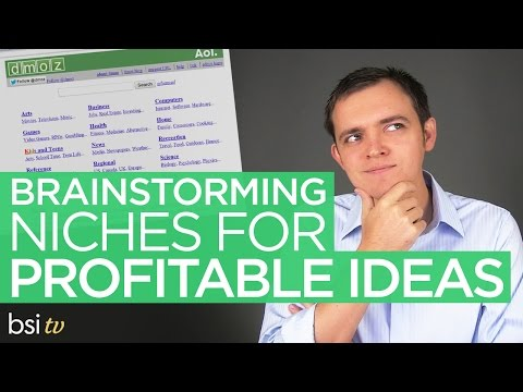 Brainstorming & Finding a Profitable Niche for Your Business with DMOZ