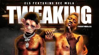 2Ls x Dee Mula x Tweaking [Prod By T-Head & A.O] (Audio Only)