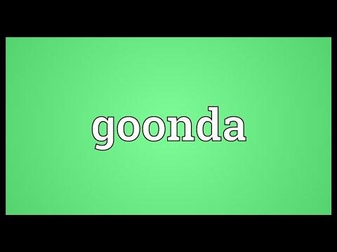 Header of goonda