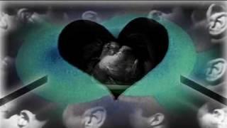 Metric - Help I'm Alive Video
