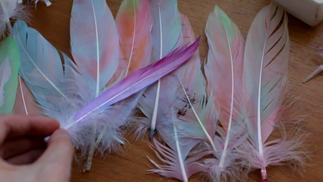 Окраска перьев в домашних условиях. Обсуждение на LiveInternet 15