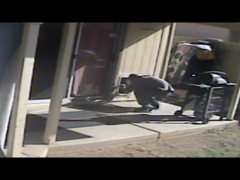 Watch Burglar Give Dog A Treat And Then Break Into Home Using Doggie Door: Cops