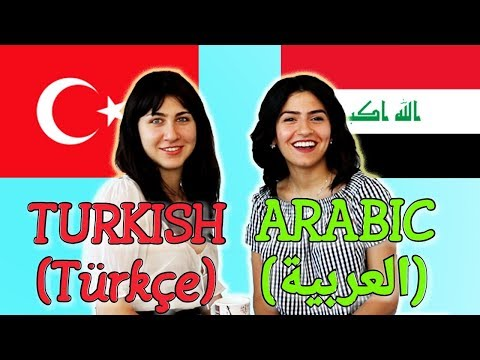Similarities Between Turkish and Arabic