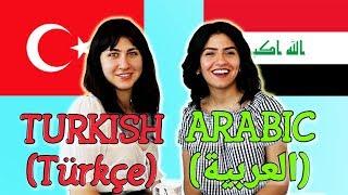 Similarities Between Turkish and Arabic