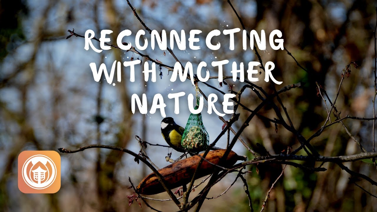 Sister Hien Nghiem on Reconnecting with Mother Nature