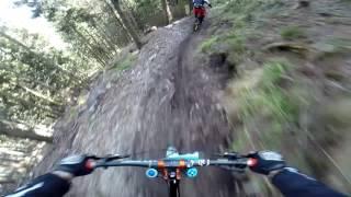 Schöckl Trail Area Graz  2017 // perfect trails