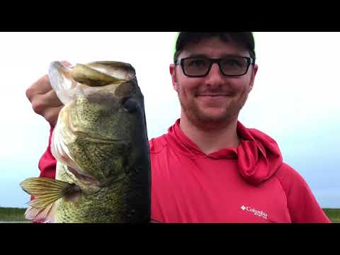 Big Time Evening Bite Is On....Check out this bait!...You Need To See This!!!