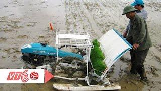 Nông dân sáng chế máy cấy lúa tự động | VTC
