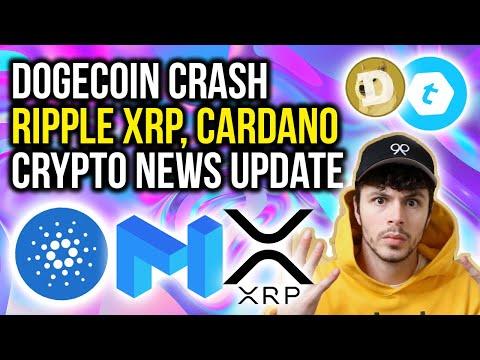 CARDANO + NETHERLANDS, DOGECOIN CRASH, RIPPLE XRP, MATIC, TELCOIN - CRYPTO NEWS UPDATE
