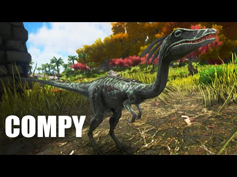 Compy Tame - ARK: Survival Evolved Compsognathus Taming