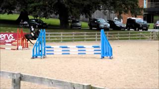 90cm, Tiverton Hunt Pony Club ODE, Bicton Arena