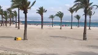 Mallorca Мальорка #пальмадемальорка #Spain #острова Путешествия Острова Испания. Лето 2019