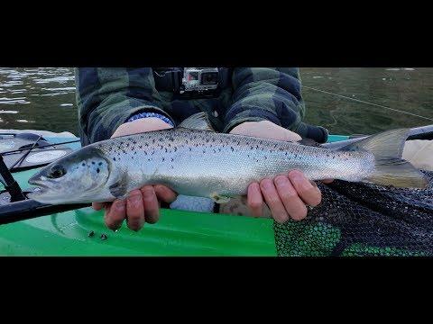 Fall Landlocked Salmon Fishing (New Jersey)