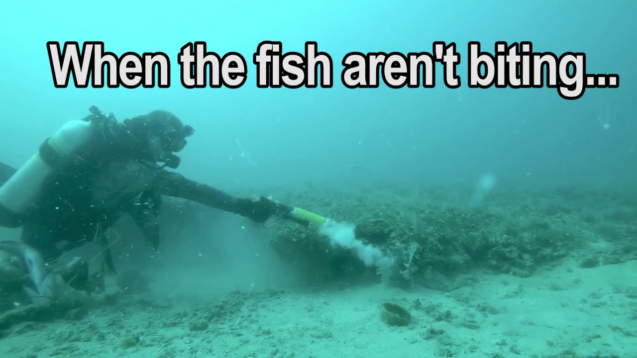 FireFish ...When the fish aren't biting | Underwater Flash Suppressor