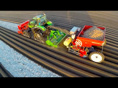 Potato Planting  | Deutz-Fahr Agrotron 7250 TTV On Row-Crop Tracks + Dewulf Miedema Belt Planter