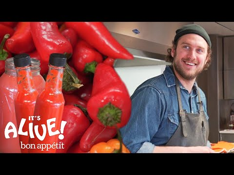 Brad Makes Fermented Hot Sauce  It's Alive  Bon Appétit