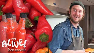 Brad Makes Fermented Hot Sauce | It