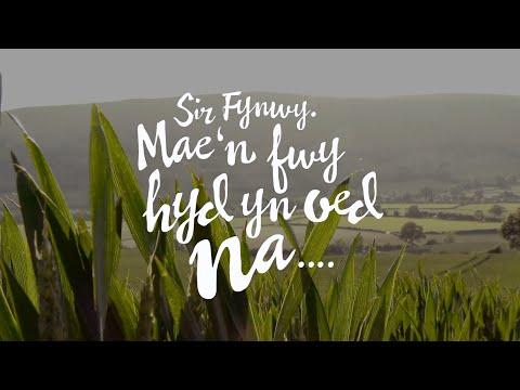 Sir Fynwy  Mae'n fwy hyd yn oed na....